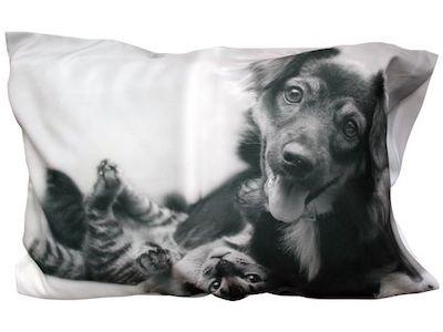 chat et chien imprimés sur taie d'oreiller